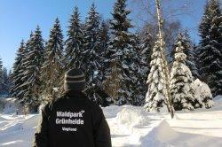 Gruenheide-winterwald